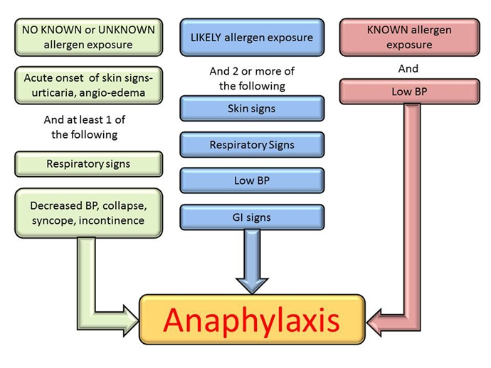 What is Anaphylaxis | Health Life Media