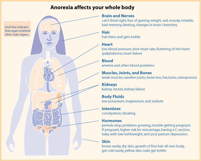 magersucht symptome körper
