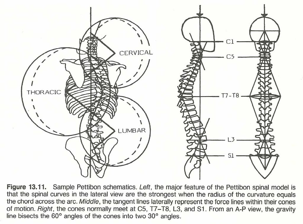Scoliosis_Fig_11