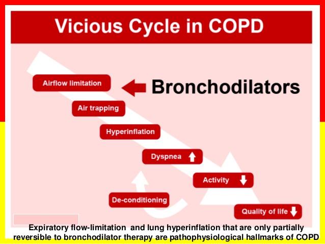 chronic-obstructive-pulmonary-disease-43-638