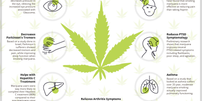 마리화나 건강